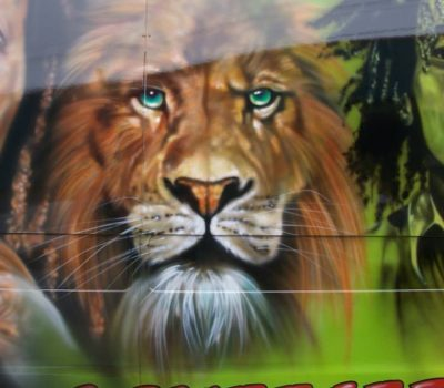 Lion on a Van