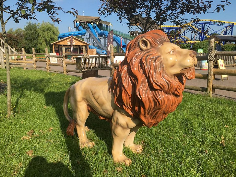 Lion in the Park