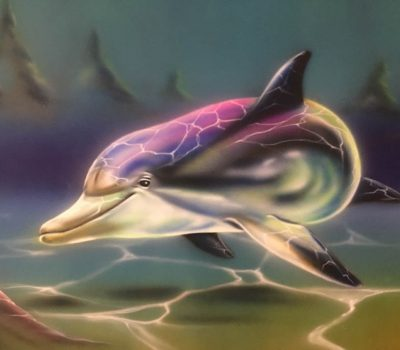 Dolphin Under Sunlight