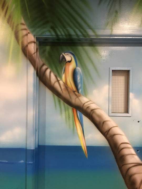 Parrot on a Palm Tree