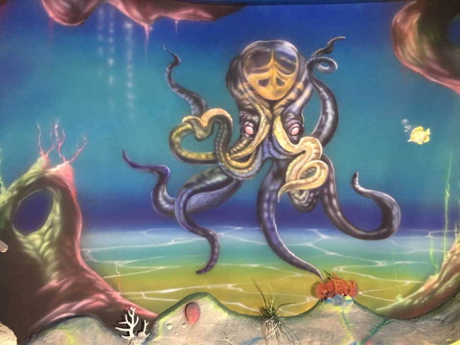 Octopus and the seabed