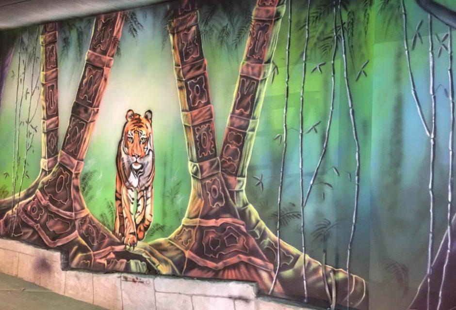 Tiger strolling In