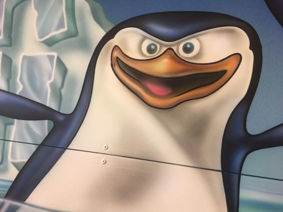 Penguin Up Close